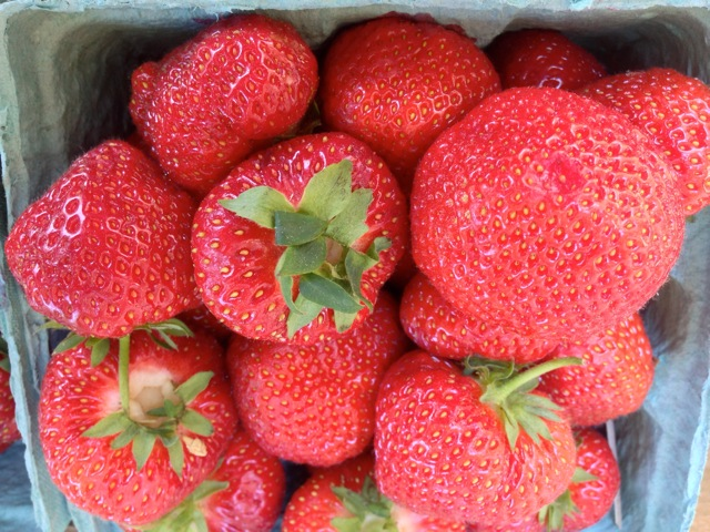Massachusetts grown Strawberries