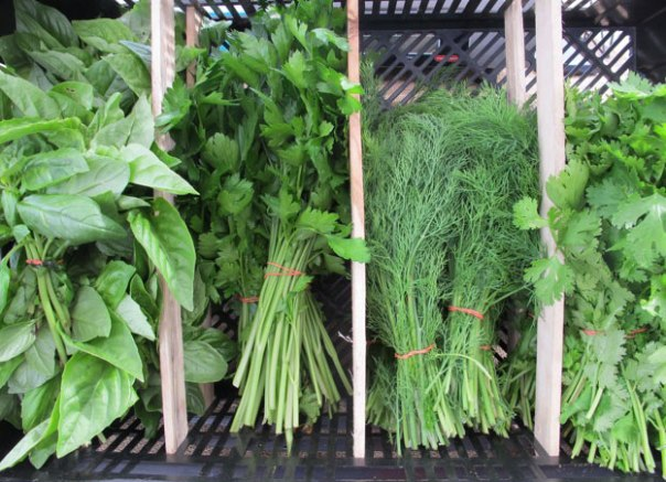 Freshly cut herbs from the market.